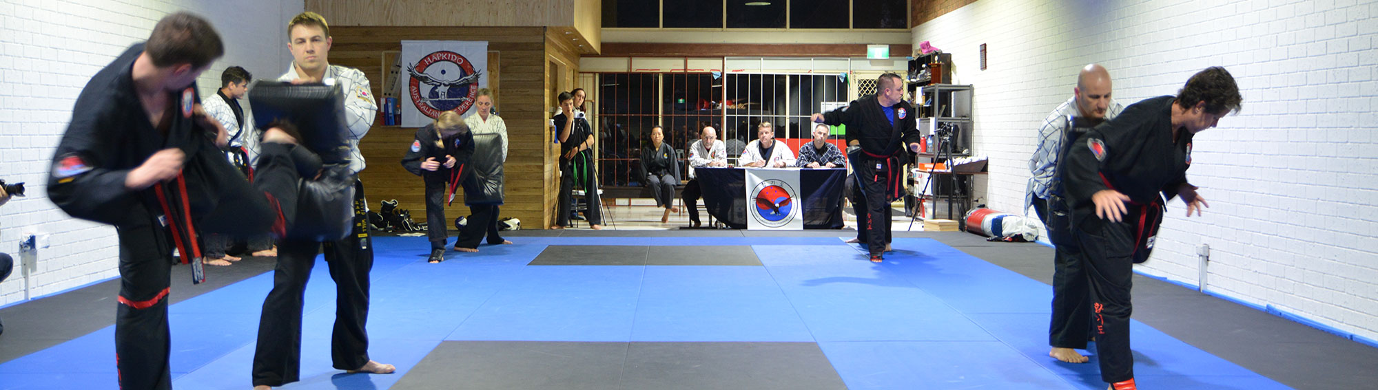 hapkido martial arts training